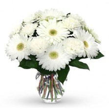 White Gerbera N Carnations