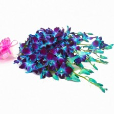 Simple Blue Orchid Bouquet