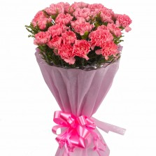All Pink Carnations Bouquet