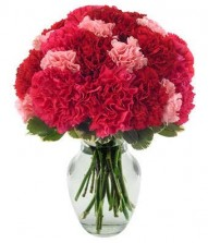 Red N Pink Carnations In A Vase