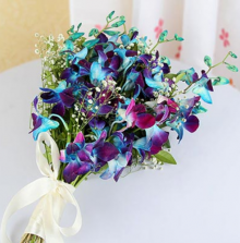 Simple Elegant Blue Orchids
