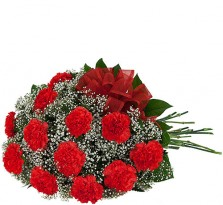 Beautiful Red Carnations