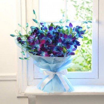 Soothing Blue