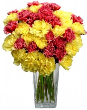 Red N Yellow Carnations In A Vase