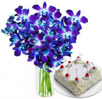 Blue Orchids In A Vase With White Forest Cake (Half Kg)