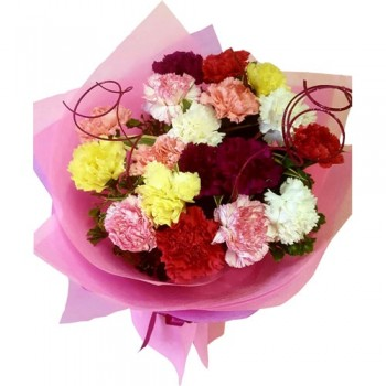 Mix Color Carnations