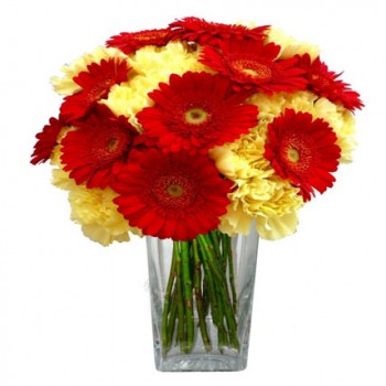 Red Gerberas N Yellow Carnations Bouquet